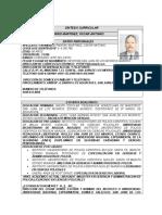 SINTESIS CURRICULAR_ MODELO_1_.doc