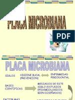 Placa Microbiana
