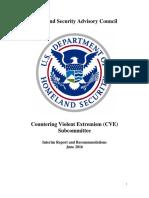 HSAC CVE Final Interim Report June 9 2016 508 Compliant