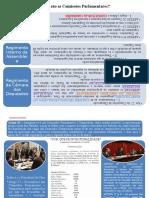 Regras Regimentais Nas Comissões