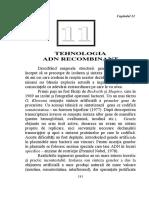 LP11 ADN Recombinant