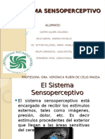 Expo de Sensopercepcion (2) (1)