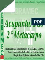 Aula Acupuntura Do 2º Metacarpo.pdf