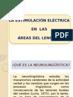 ESTIMULACIÓN ELÉCTRICA (SUSTENTACIÓN )
