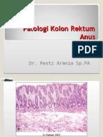 Kuliah Pa Patologi Kolon Unila Dr Resti