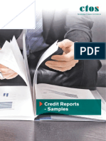 CTOS Credit Sample Report.pdf