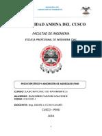 Bladimir Farfan Valvede - Gravedad Especifica y Absorcion AF