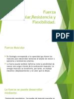 Fuerza Muscular,Resistencia y Flexibilidad