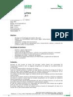 Programa Analítico Aeronáutica I 2013