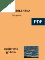 Astelehena