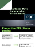 Strain Bakteri