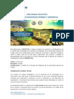 Diplomado Gratuito - Gestión en Seguridad Minera y Ambiental.pdf