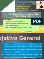241061683 La Papaya Carica Papaya en Refrigeracion Grupo 3