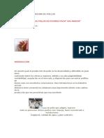 CRIA COMERCIALIZACION DE POLLOS.docx