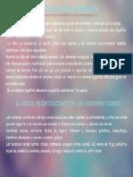 Detox-Completo Página 08