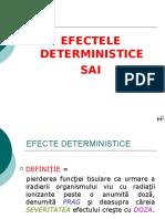 Efecte Deterministice -SAI_1