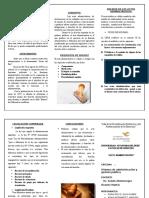 triptico-de-acto administrativo.doc