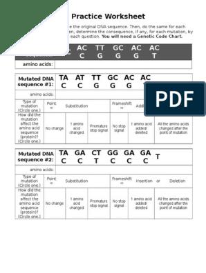 dna mutations practice worksheet | Point Mutation | Mutation