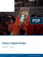 Turkey's Digital Divides