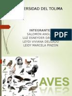 AVES Diapositivas