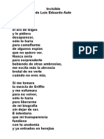 invisible_aute.pdf