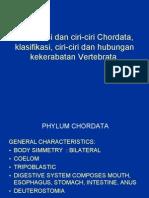 Klasifikasi Dan Ciri-ciri Chordata, Klasifikasi Ciri-ciri
