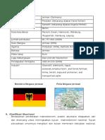Akuntansi Di Negara Jerman2