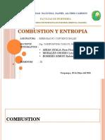 Expo de Copmbustion y Entropìa
