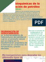 Bases bioquímicas de la degradación de petróleo.pptx