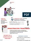 ACTIVIDAD DOCENTE 15.06. (1).pptx