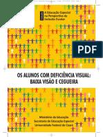 AEE para pessoas com cegueira e baixa visão.pdf