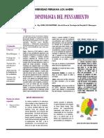 Psicopatologia Del Pensamiento Clase 10 y 11 2016-i PDF