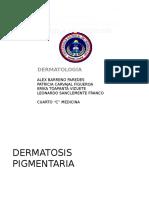 dermatosis pigmentarias