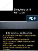 4. RBC, Structure and Function