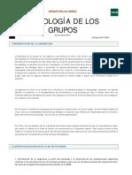 guia Psicologia de Los Grupos