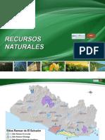 Areas Naturales1