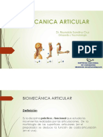 4 Biomecánica Articular
