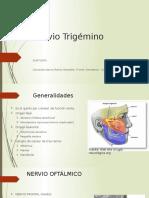 Nervio-Trigémino