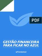 Guia de Gestao Financeira.pdf