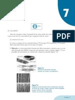 07.Los procesos de preelaboración