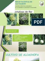 Hortalizas de Flor