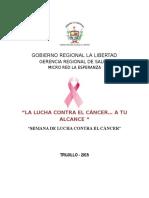 Plan Dia Mundial Contra Cancer 2015 Mrle