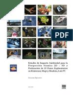 Resumen Ejecutivo Español[1]