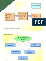 Capitulo1-Organizacao_Administracao.pdf