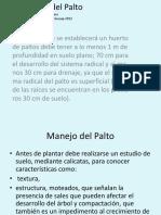Manejo Palto 2 Mrgv