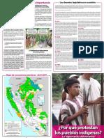 Porqueprotestan Los Pueblos Indigenas