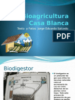 bioagriculturacasablanca-090801133539-phpapp02
