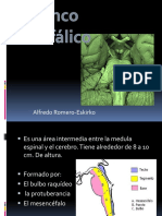 10.tronco encefalico