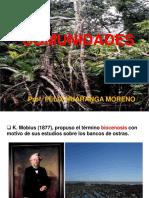 COMUNIDADES 2015-ING.T.pdf