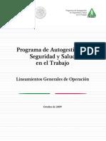 Lineamientos Generales 2008.pdf